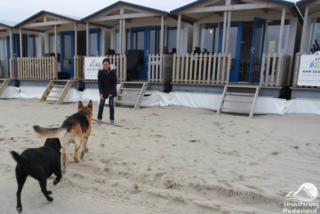 Strandhaus Am Meer Schlafen