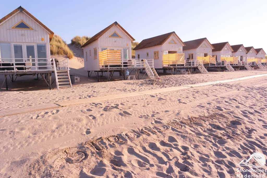 Stranddroom - Zeeland