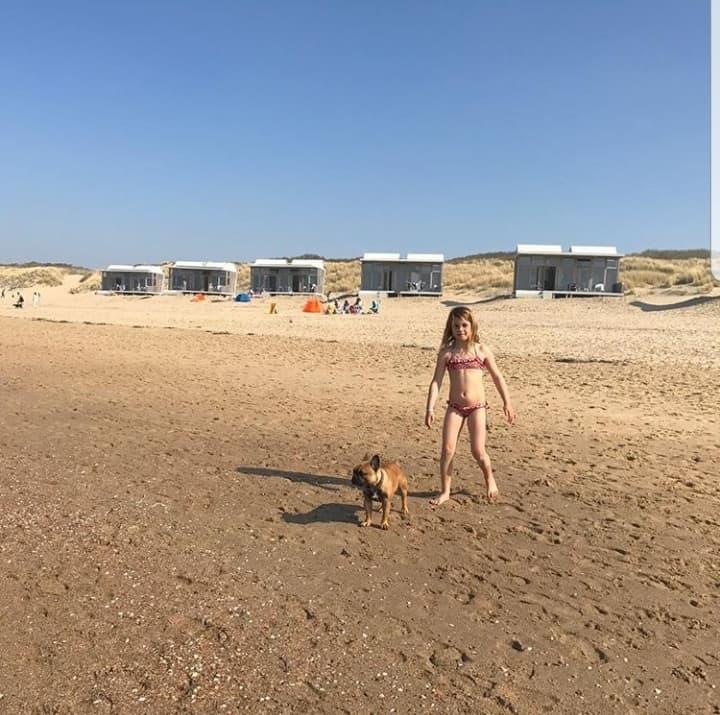 Strandhaus Cadzand mit Hund
